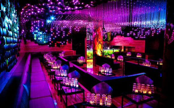Greenhouse nightclub greenhouse nyc vip - Decoration boite de nuit ...