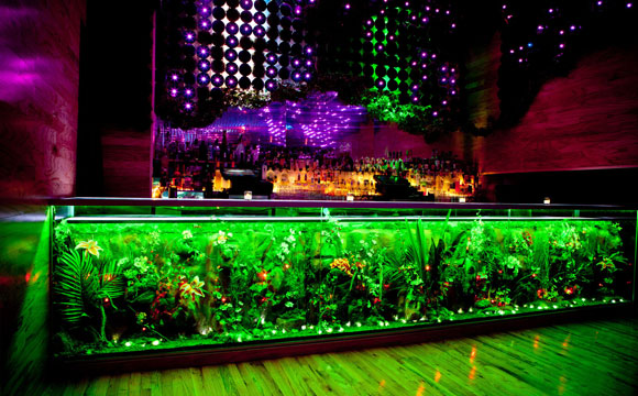 Greenhouse Nightclub Bottle Service Nyc Vip