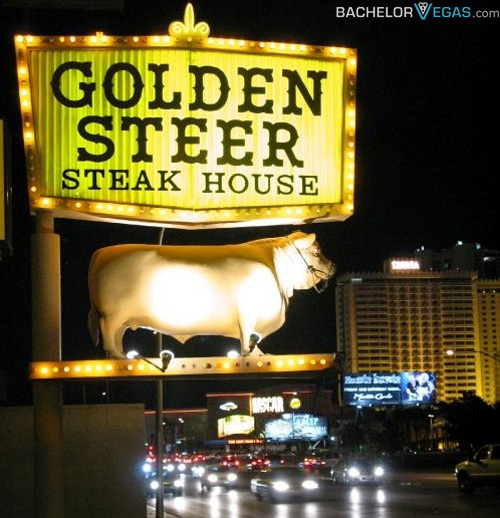 golden steer