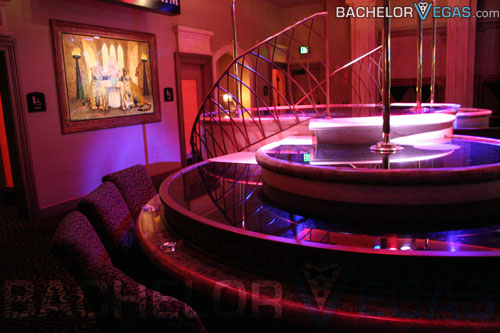 Amazoncom : Strip Pole LED Light Up Disco Dance for