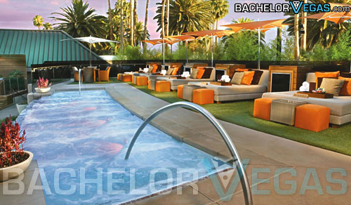 Bare pool Las Vegas