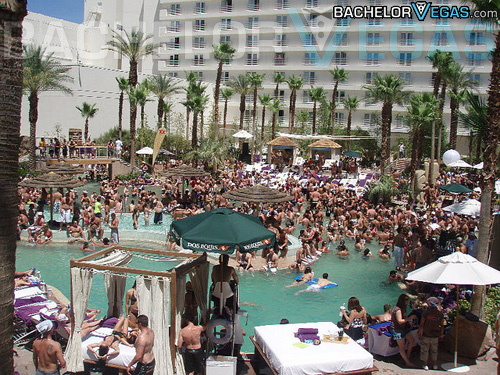 Las Vegas Rehab pool party