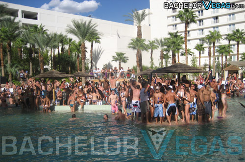 Rehab pool party HardRock