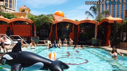 Tao Beach Vegas Reviews